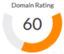Domain Rating 60