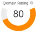 Domain Rating 80